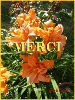 mercijoeliah